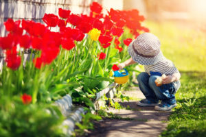 Spring Has Sprung! Prepare Your Home With Seasonal Maintenance